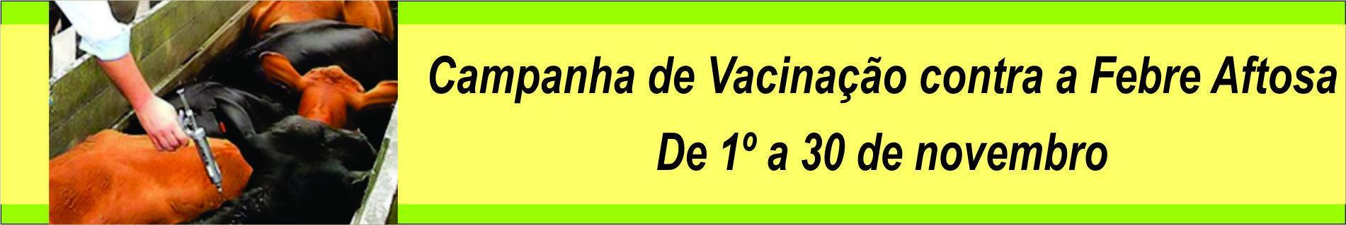 Vacinação nov 17