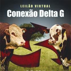 Virtual Conexão Delta G