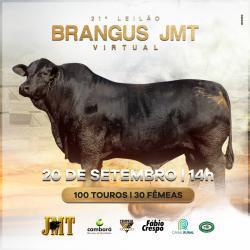 Leilão Brangus JMT