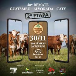 48º Remate Guatambú Alvorada Caty