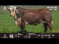 lote 15 - D013 - Braford 3a