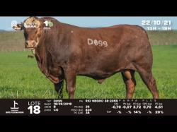 lote 18 - D099 - Braford 3a