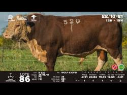 lote 86 - R520 - Hereford 3a