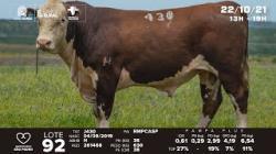 lote 92 - J430 - Hereford 2a